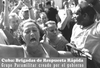 EL ARCHIVO DEL CHIVA  - Página 2 Brigadarespuestarapida15