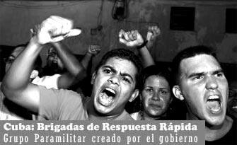 EL ARCHIVO DEL CHIVA  - Página 2 Brigadarespuestarapida6