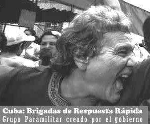 EL ARCHIVO DEL CHIVA  - Página 2 Brigadarespuestarapida7